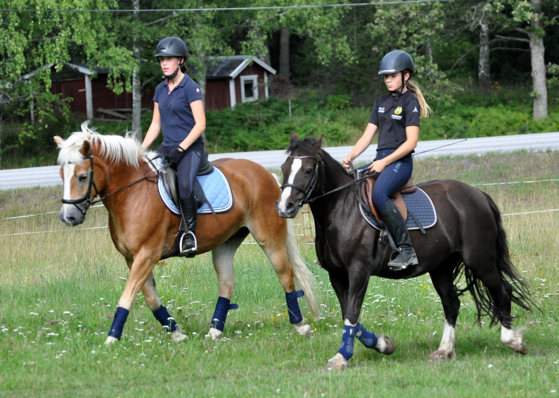 två hästar och två ryttare på nysveds gård