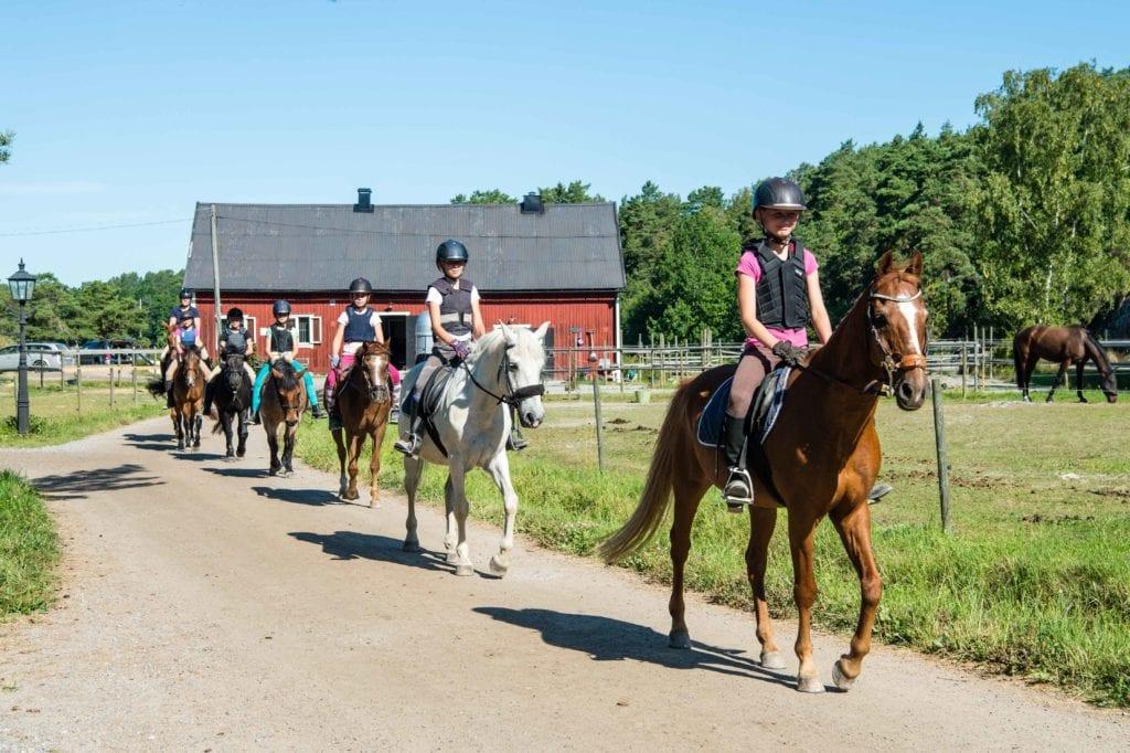 ett led med hästar på skaft stall