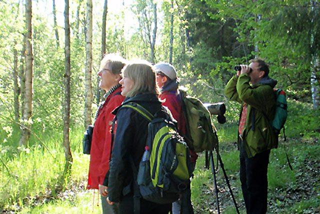 Personer i skogen som spanar efter fåglar
